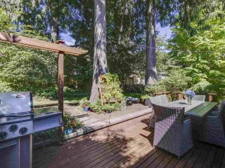Photo 32: 3751 ROBLIN Place in North Vancouver: Princess Park House for sale : MLS®# R2485057