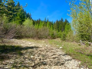 Photo 29: DL 1752 GIVEOUT CREEK FOREST SERVICE ROAD in Nelson: Vacant Land for sale : MLS®# 2458886