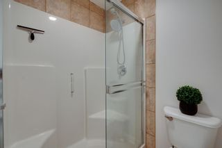 Photo 36: 202 Royal Birch View NW in Calgary: Royal Oak Detached for sale : MLS®# A1132395