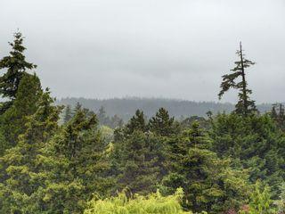 Photo 19: 401 1008 Tillicum Rd in Esquimalt: Es Kinsmen Park Condo for sale : MLS®# 841521
