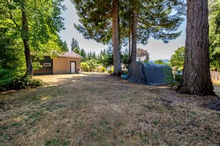 Photo 50: 810 Back Rd in : CV Courtenay East House for sale (Comox Valley)  : MLS®# 883531