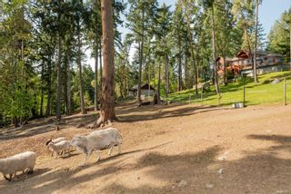 Photo 54: 1041 Sunset Dr in : GI Salt Spring House for sale (Gulf Islands)  : MLS®# 874624