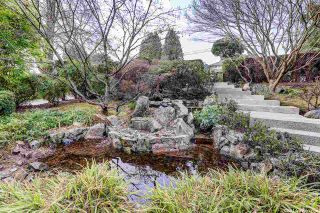 Photo 18: 1388 INGLEWOOD Avenue in West Vancouver: Ambleside House for sale : MLS®# R2559392