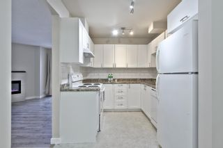 Photo 12: 334 10404 24 Avenue NW in Edmonton: Zone 16 Townhouse for sale : MLS®# E4262613