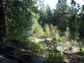 Photo 18: 3030 Vickers Trail in Anglemont: North Shuswap House for sale (Shuswap)  : MLS®# 10054853