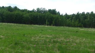 Photo 18: 54411 RR 40: Rural Lac Ste. Anne County Rural Land/Vacant Lot for sale : MLS®# E4239946