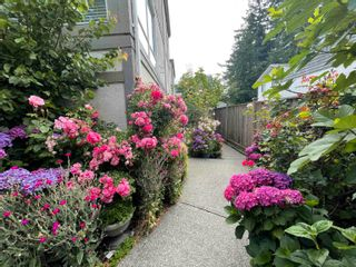 """Photo 2: 3 1552 EVERALL Street: White Rock Townhouse for sale in """"EVERALL COURT"""" (South Surrey White Rock)  : MLS®# R2616218"""