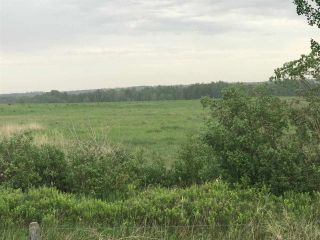 Photo 5: TWP 580 Rg Rd 240 Sturgeon County: Rural Sturgeon County Rural Land/Vacant Lot for sale : MLS®# E4248027