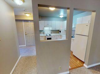 Photo 7: 103 3225 Alder St in : SE Quadra Condo for sale (Saanich East)  : MLS®# 877393