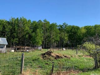 Photo 33: Debden Park Valley Acreage in Canwood: Residential for sale (Canwood Rm No. 494)  : MLS®# SK857303