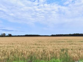 Photo 5: RM 486 5 Quarter Land in Moose Range: Farm for sale (Moose Range Rm No. 486)  : MLS®# SK867716