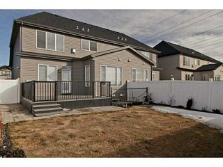 Photo 19: 113 Rainbow Falls Boulevard: Chestermere House for sale : MLS®# C3656518