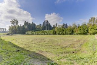 """Photo 6: 25965 24 Avenue in Langley: Otter District House for sale in """"Willpower Stables"""" : MLS®# R2503545"""