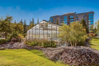 Photo 31: 105 4555 Varsity Lane NW in Calgary: Varsity Apartment for sale : MLS®# A1082735