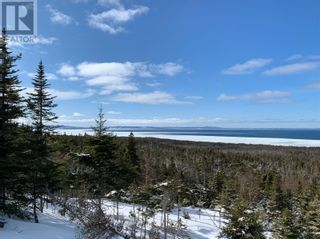 Photo 6: 2 Hynes Road Unit#ROUTE 460 in Port Au Port East: Vacant Land for sale : MLS®# 1233625