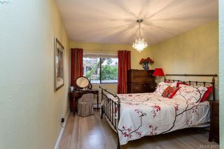 Photo 11: 206 2095 Oak Bay Ave in VICTORIA: OB South Oak Bay Condo for sale (Oak Bay)  : MLS®# 802450