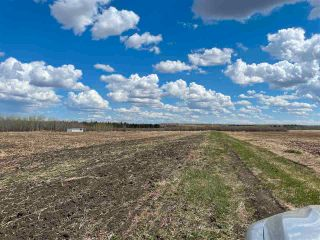 Photo 35: Twp 604 Rg Rd 244: Rural Westlock County Rural Land/Vacant Lot for sale : MLS®# E4223747