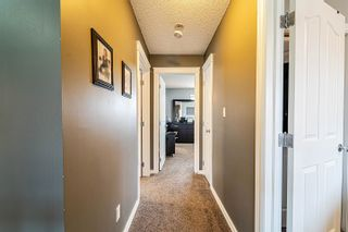 Photo 25: 117 64 Street in Edmonton: Zone 53 House for sale : MLS®# E4264762