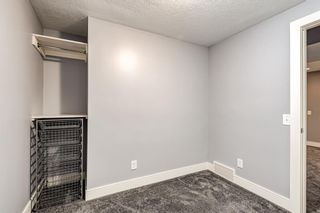 Photo 25: 253 Arbour Grove Close NW in Calgary: Arbour Lake Detached for sale : MLS®# A1128031