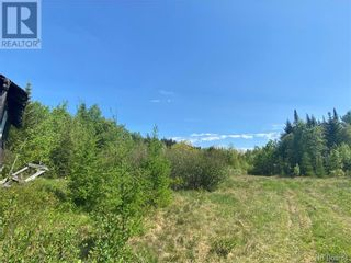 Photo 30: 74.62 Acres Route 127 in Bayside: Vacant Land for sale : MLS®# NB058351
