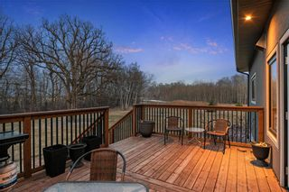 Photo 44: 71085 PR 212 RD 30E Road in Springfield: Cook's Creek Residential for sale (R04)  : MLS®# 202110247