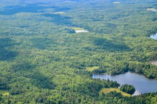Photo 1: 16536 Rainy Lake in Fort Frances: Vacant Land for sale : MLS®# TB212374