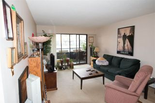 Photo 9: 318 2551 WILLOW Lane in Abbotsford: Central Abbotsford Condo for sale : MLS®# R2181188