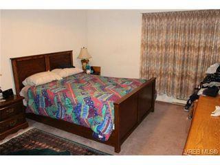 Photo 5: 203 429 Linden Ave in VICTORIA: Vi Fairfield West Condo for sale (Victoria)  : MLS®# 727710