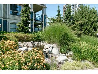 """Photo 6: 401 275 ROSS Drive in New Westminster: Fraserview NW Condo for sale in """"The Grove"""" : MLS®# V1128835"""