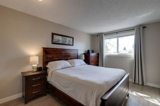 Photo 13: 196 Edgedale Way NW in Calgary: Edgemont Detached for sale : MLS®# A1147191