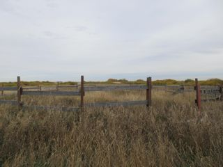 Photo 18: 55101 RR 270: Rural Sturgeon County Rural Land/Vacant Lot for sale : MLS®# E4265205
