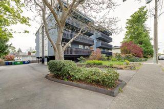 Photo 27: 301 1215 Bay St in : Vi Fernwood Condo for sale (Victoria)  : MLS®# 875030