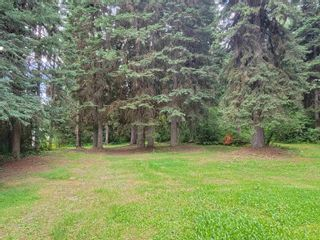 Photo 13: 4193 W AUSTIN Road in Prince George: Hart Highlands House for sale (PG City North (Zone 73))  : MLS®# R2612255