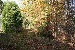 Photo 3: 652 Bush Street Part 4 Street in Caledon: Rural Caledon Property for sale : MLS®# W4689522