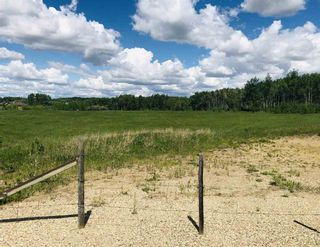 Photo 4: 51315 RR262 Road: Rural Parkland County Rural Land/Vacant Lot for sale : MLS®# E4256896