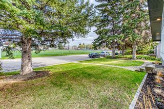 Photo 3: 621 Agate Crescent SE in Calgary: Acadia Detached for sale : MLS®# A1109681