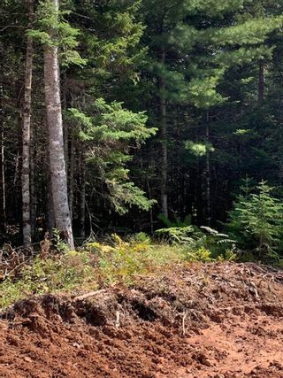 Photo 2: Lot 20 Fairway Avenue in Shubenacadie East: 105-East Hants/Colchester West Vacant Land for sale (Halifax-Dartmouth)  : MLS®# 202122122