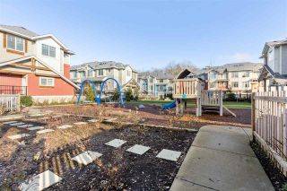 """Photo 29: 88 20498 82 Avenue in Langley: Willoughby Heights Townhouse for sale in """"GABRIOLA PARK"""" : MLS®# R2530220"""