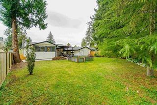 """Photo 37: 15054 CANARY Drive in Surrey: Bolivar Heights House for sale in """"Birdland"""" (North Surrey)  : MLS®# R2576273"""