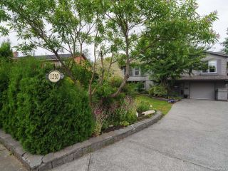 Photo 31: 1250 22nd St in COURTENAY: CV Courtenay City House for sale (Comox Valley)  : MLS®# 735547