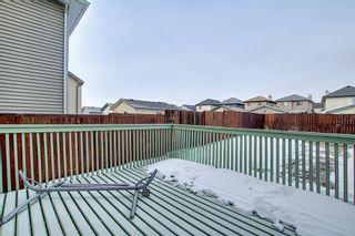 Photo 39: 208 Taradale Drive NE in Calgary: Taradale Detached for sale : MLS®# A1067291