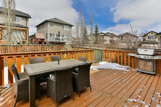 Photo 29: 246 CITADEL ESTATES Heights NW in Calgary: Citadel Detached for sale : MLS®# C4242147