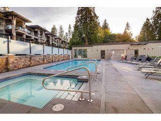 Photo 19: 206 15195 36 Avenue in Surrey: Morgan Creek Condo for sale (South Surrey White Rock)  : MLS®# F1424522
