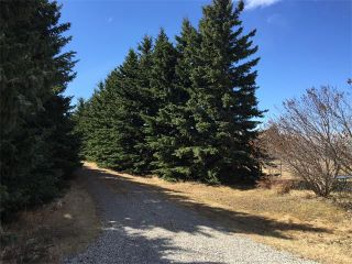 Photo 16: 32182 TWP RD 262 in Rural Rockyview County: Rural Rocky View MD House for sale : MLS®# C4006884