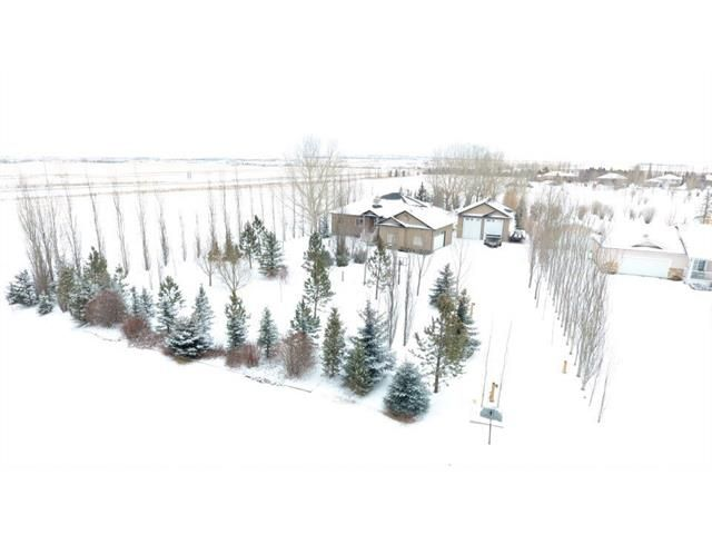 A fresh dusting of snow really makes this yard's winter wonderland come to life