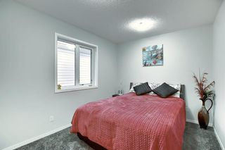 Photo 16: 16 Walden Mount SE in Calgary: Walden Residential for sale : MLS®# A1053734