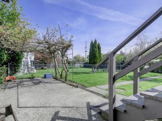 Photo 21: 3977 Birchwood St in : SE Lambrick Park House for sale (Saanich East)  : MLS®# 874432