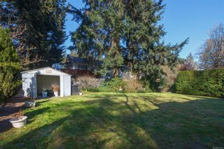Photo 13: 422 Tipton Ave in : Co Wishart South House for sale (Colwood)  : MLS®# 872162