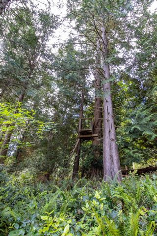 Photo 31: 8838 Canal Rd in : GI Pender Island House for sale (Gulf Islands)  : MLS®# 877233