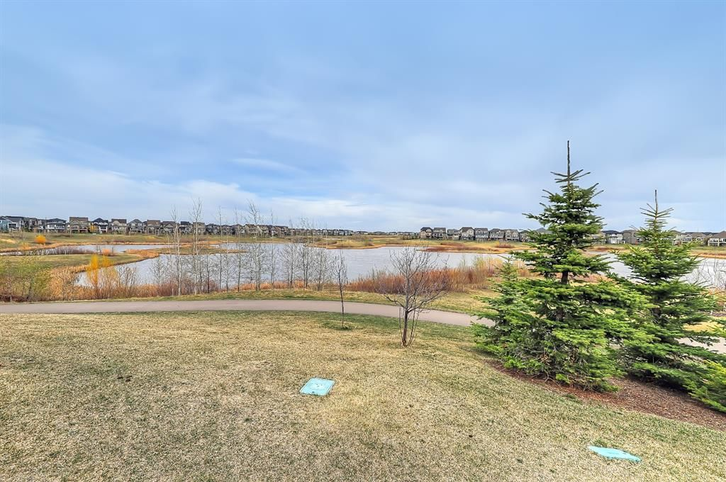 Photo 48: Photos: 188 Masters Rise SE in Calgary: Mahogany Detached for sale : MLS®# A1103205